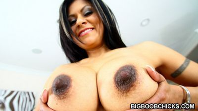Big Boob Chicks torrent